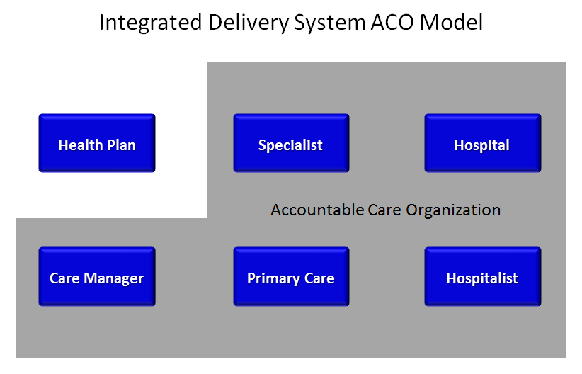 integrated service delivery model pdf